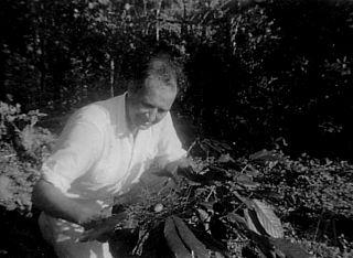 Wilbur Downs American naturalist and virologist
