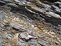Bentonite (105.6 Ma) in the Dakota Sandstone (Lower Cretaceous) (Dinosaur Ridge, Colorado, USA) 5 (22022679749).jpg