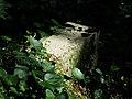 Berdychowo, old evang. cemetery (6).jpg