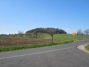 View to the Steinberg near Bertsdorf