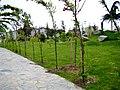 Beylikdüzü Yeşil Vadi-Yaşam Vadisi Botanik Şehir Parkı Nisan 2014 - panoramio (7).jpg