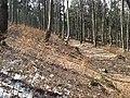 Bielawa, Poland - panoramio (19).jpg