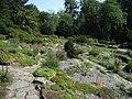 Bielefeld Botanischer Garten Alpinum 2.jpg