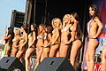 Bikini Contest, USA, 2010.jpg