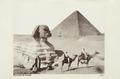 Bild från familjen von Hallwyls resa genom Egypten och Sudan, 5 november 1900 – 29 mars 1901 - Hallwylska museet - 91717.tif