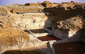 Bilma - The saline pans at Bilma.