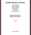 Bindu cover.jpg