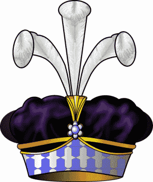 Victor de Fay de La Tour-Maubourg - Image: Biret baron