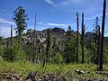 Black Elk Peak hike 02.jpg