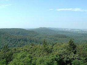 Blick-über-den-Teutoburger-Wald1.jpg