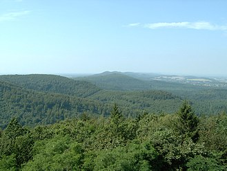 Teutoburg Forest - View over the Teutoburg Forest