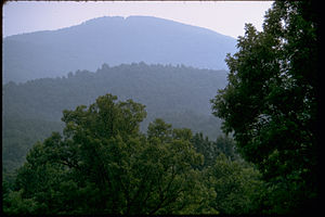 Blue Ridge Parkway BLRI9258.jpg