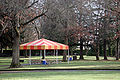 Blue covered picnic.jpg