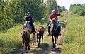 Bob's Wild West Adventures, Elm Creek (340242) (24104175933).jpg