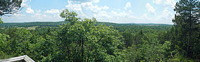 A panorama of the forest valley to the south from an overlook along the trail