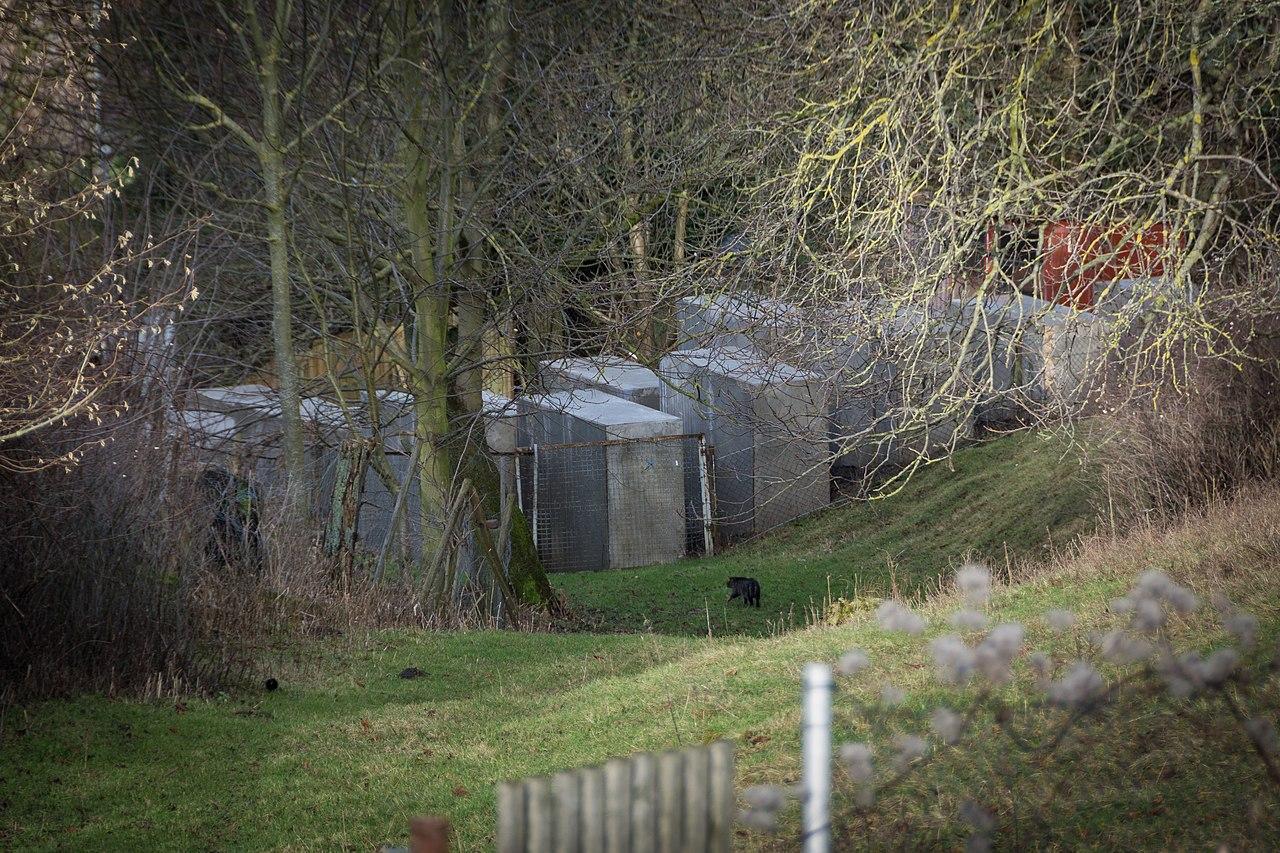 Bornhagen Friedensstr Nachbildung Holocaust-Mahnmal 1 2018-01-01.jpg