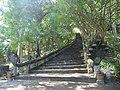 Bos Knoar Hill 002 - panoramio (1).jpg