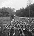 Bosbewerking, arbeiders, boomstammen, werkzaamheden, gereedschappen, motorzagen, Bestanddeelnr 253-5980.jpg