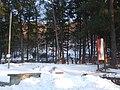 Bosco di Rigutinelli sotto la neve - panoramio.jpg