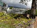 Botanischer Garten Innsbruck Alpinum 08.jpg