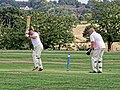 Botany Bay CC v Rosaneri CC at Botany Bay, Enfield, London 1.jpg