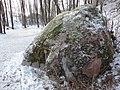 Bražuolės akmuo.JPG