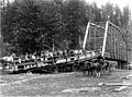 Bridge near Olympia, Washington, ca 1899 (WASTATE 985).jpeg
