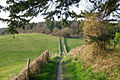 Bridlepath, Chalton Down - geograph.org.uk - 383089.jpg