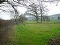 Bridleway - geograph.org.uk - 369154.jpg
