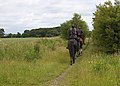 Bridleway near Holme-on-Spalding-Moor - geograph.org.uk - 1372881.jpg