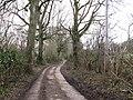 Bridleway to Greenhurst Farm - geograph.org.uk - 1183318.jpg