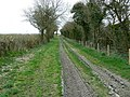 Bridleway to Southgrove Copse, south of Marr Green - geograph.org.uk - 1229327.jpg