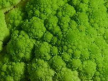 Broccoflower closeup.jpg