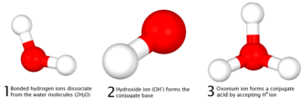 Acid–base reaction - Image: Bronsted lowry 3d diagram