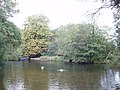 Brundon Mill Pond - geograph.org.uk - 233700.jpg