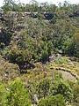 Budj Bim ‐ Mt Eccles National Park, Victoria, Australia 19.jpg
