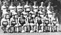 Bundesarchiv Bild 183-1990-0809-029, Mannschaftsfoto 1. FC Dynamo Dresden.jpg