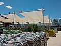 Bunnings Warehouse Wagga Wagga garden department.jpg
