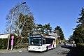 Bus Cognac A fevrier20.jpg