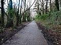 Bushy Park, Dublin -146459 (45565147705).jpg