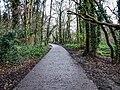 Bushy Park, Dublin -146461 (45754721384).jpg