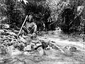COLLECTIE TROPENMUSEUM Een Alfoer van Buru houdt een bamboekoker vast met drinkwater erin TMnr 10002854.jpg