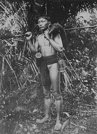 Humans have traditionally hunted prey for subsistence. COLLECTIE TROPENMUSEUM Portret van een Dajak jager op Borneo met een gevangen zwijn over de schouder TMnr 60043389.jpg