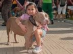 Caminata por los perros y animales Maracaibo 2012 (38).jpg