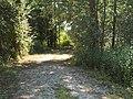 Camminando per la riserva Casalbeltrame 1.jpg