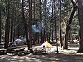 Camp4-woodsmoke.jpg