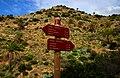 Canary Islands 2018-02-13 (39732275905).jpg
