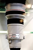 Canon-300mm-f28 MG 2036.jpg