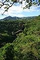 Canopy River - panoramio (2).jpg