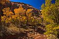 Canyonlands National Park…Needles area (6293951751).jpg
